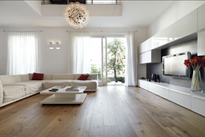 Contemporary_West_Hollywood_Living_Room